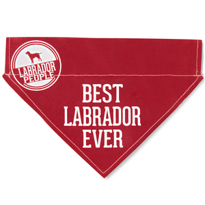 "Best Labrador by We Pets - 12"" x 8"" Canvas Slip on Pet Bandana"