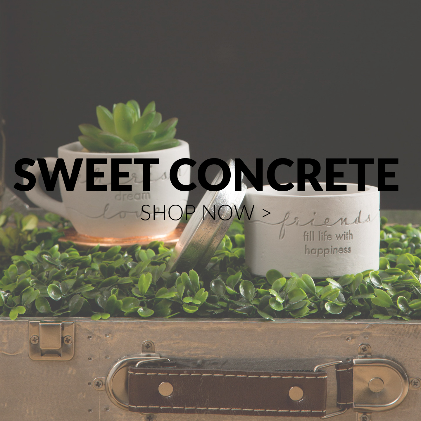 Sweet Concrete