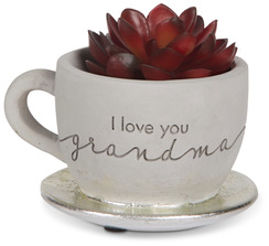 "Grandma by Sweet Concrete - 4"" x 2.5"" Cement Teacup Planter & Faux Succulent"