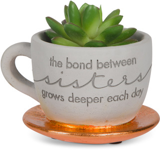"Sister by Sweet Concrete - 4"" x 2.5"" Cement Teacup Planter & Faux Succulent"