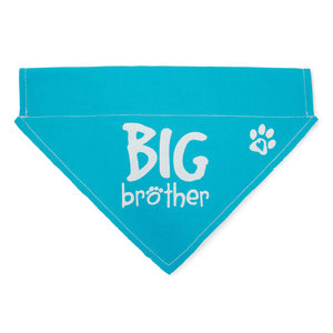 "Big Brother by Pavilion's Pets - 12""x8"" Canvas Slip on Pet Bandana"