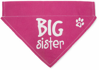 "Big Sister by Pavilion's Pets - 12""x8"" Canvas Slip on Pet Bandana"
