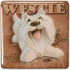 West Highland Terrier by My Pedigree Pals -
