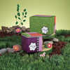 Best Things in Life by Groovy Garden - Package