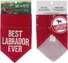 Best Labrador by We Pets - Package