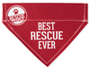 Best Rescue by We Pets -
