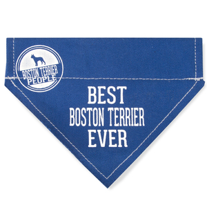 "Best Boston Terrier by We Pets - 7"" x 5"" Canvas Slip on Pet Bandana"