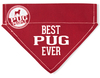 Best Pug by We Pets -