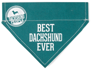 "Best Dachshund by We Pets - 7"" x 5"" Canvas Slip on Pet Bandana"