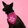 Pretty Girl by We Pets - Scene