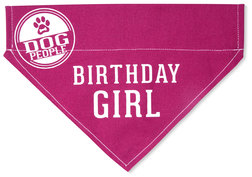 "Birthday Girl by We Pets - 7"" x 5"" Canvas Slip on Pet Bandana"