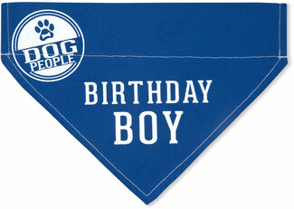 "Birthday Boy by We Pets - 7"" x 5"" Canvas Slip on Pet Bandana"