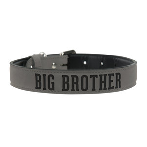 "S/M Big Brother by We Pets -  15"" PU Leather Pet Collar"