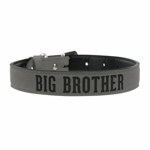 "L/XL Big Brother by We Pets -  29"" PU Leather Pet Collar"