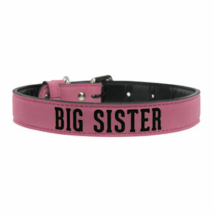 "L/XL Big Sister by We Pets -  29"" PU Leather Pet Collar"