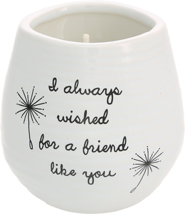 Friend Like You by Dandelion Wishes - 8 oz - 100% Soy Wax Candle Scent: Serenity